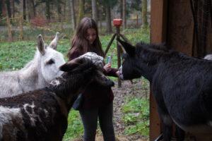 Miriam mit unseren Eseln